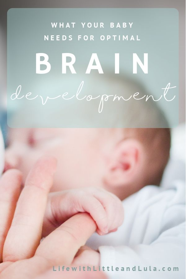 Science tells us it's impossible to spoil a baby. The more we meet their needs, respond to their cries, pay them attention and give them loving touch and interactions the better it is for their brains. Read why here. #family #braindevelopment #babies #baby #neuroscience #touch #attachment
